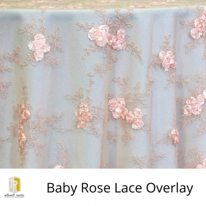 Baby Rose Lace Overlay